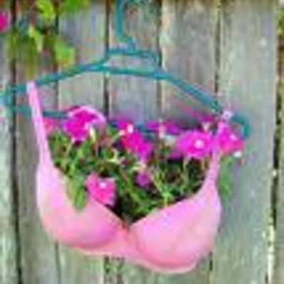 Ideale oplossing voor het pottentekort straks voor onze bloemetjes