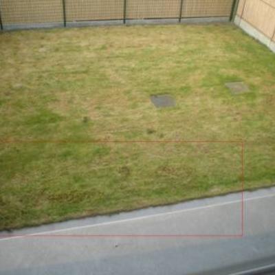 Hoe krijg ik mijn grasmatten terug groen