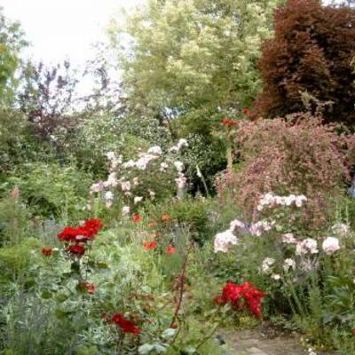 Cottage-tuin onderhouden