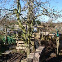 Foto van Izaak