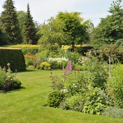 Open tuin De Tuynkamer