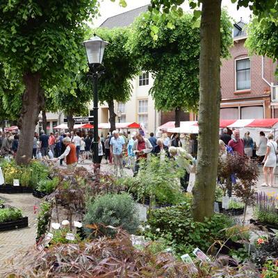Markt onder de Linden - TUINMARKT Noordwijk-Binnen