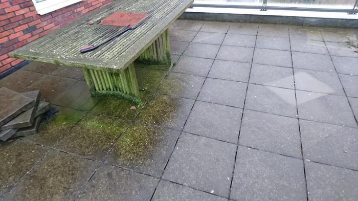 Mos Verwijderen Tegels : Algen en mossen op dakterras