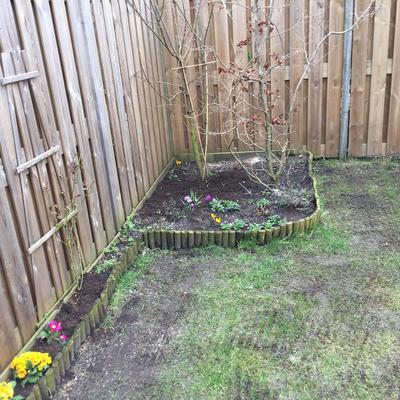 Suggesties planten en bloemen in de tuin