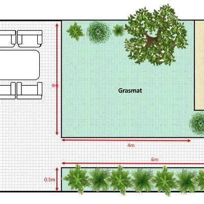 Welke boom en planten in tuin met weinig zon?