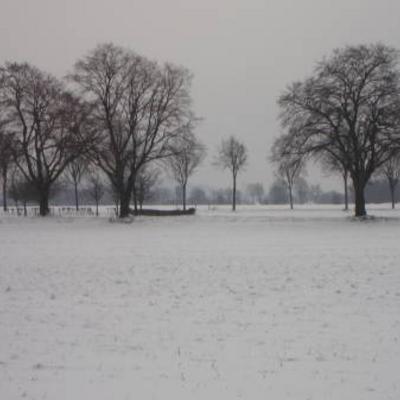 Fotos van 10 januari