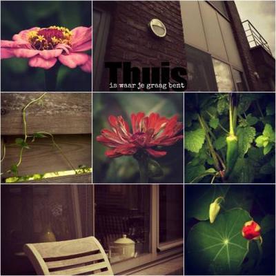 Tuin en huis  Thuis