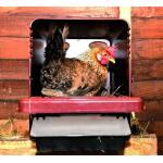 Legnest voor kippen met opvang - bruin