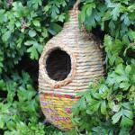 Vogelnest Shesali - ovaal