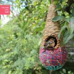 Vogelnest Tahera - traan