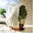 Thermobeschermhoes planten Jumbo -