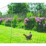 Afrasteringsnet kippen - L 50 m x H 1,12 m