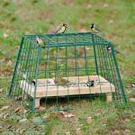 Beschermkooi Maxi tuinvogels 56 cm