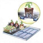 Bewateringstrays met vloeidoek (2 stuks)