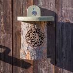 Bijenkast boomstam - National Trust