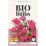 Bio Tulp 'Little Beauty' - bio flowerbulbs (7 stuks)