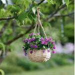 Bloemenmand hangend - kunststof