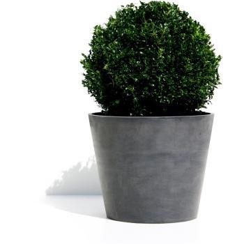 https://www.tuinadvies.nl/shop/foto/sizes/bloempot_eco_rond_50_cm_1484067817_1-350.jpg