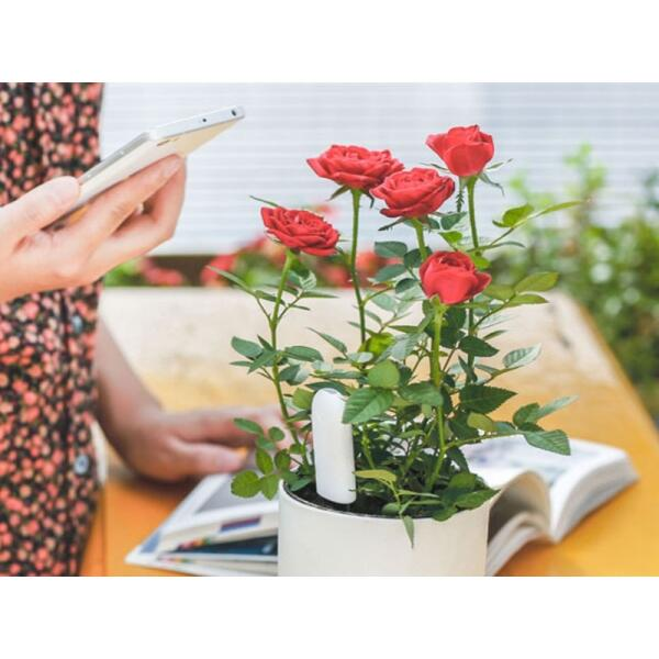 Bluetooth planten monitor 4 in 1