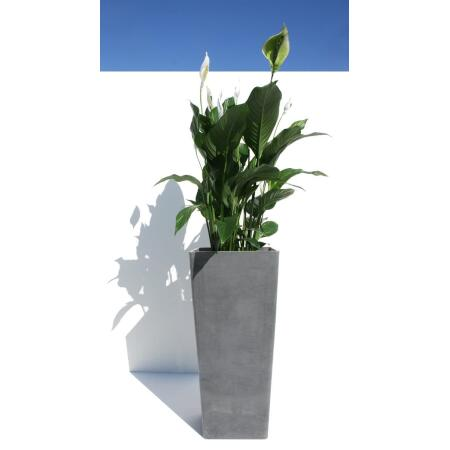 Ecopots High 50 x 32 cm bluestone