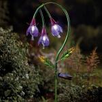Fuchsia als solar tuinlamp