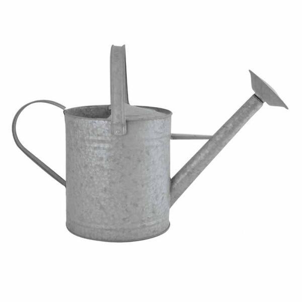 Zink gieter kopen oude zink gieter kopen tuinadvies - Kleur grijs zink ...