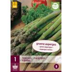 Asperges 'Gijnlim' - groene asperges