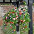 Hangmand met bloemen - kunststof
