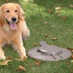 Hondendrolverwerker metaal - septische emmer