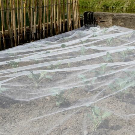 Insectennet biocontrol 33 m²