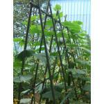 Klimrek voor groenten 1,80 m