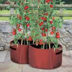 Kweekzak tomaten 40 liter