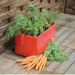 Kweekzak voor wortelen 45 x 30 x 30 cm (2 stuks)