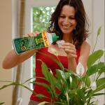 Meststof COMPO kamerplanten en palmen - 1 liter