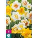 Narcissus dubbelbloemig mix
