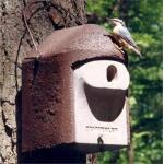 Nestkast houtbeton - invliegopening ovaal - Schwegler