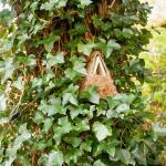 Nestkast winterkoning camouflage