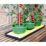 Plant- en gietpot groen
