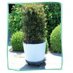 Plantentrolley hout 40 cm