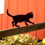Silhouette balancerende kat - decoratief