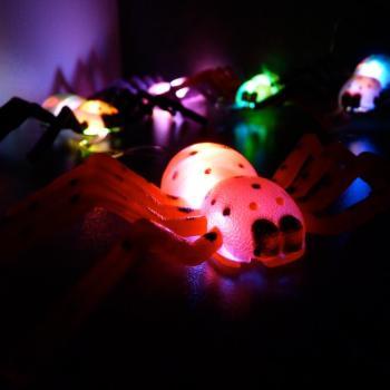 Halloween Verlichting.Spinnen Lichtslinger Halloween