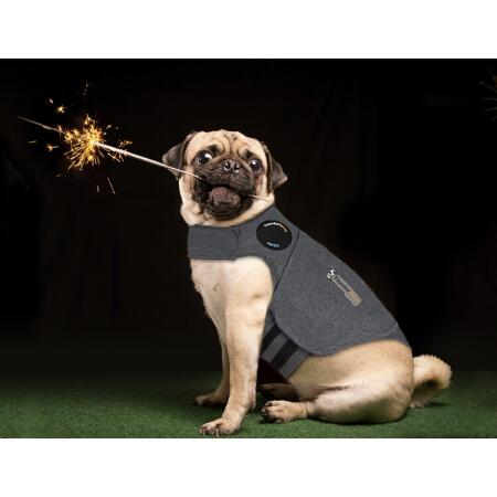 Thundershirt n°6 XL