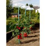 Tomatenhoed wateropvang