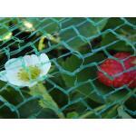 Tuinnet fijnmazig - licht 5 m x 5 meter