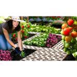 Tuinpadplaten - grondplaten bruin