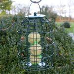 Vetbolvoedersilo kleine vogels