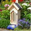 Vlinderhuis met voedertafel