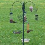 Compleet voederstation voor tuinvogels
