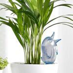 Gietsysteem potplanten vogeltje blauw - 220 ml