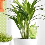 Gietsysteem potplanten vogeltje groen - 220 ml